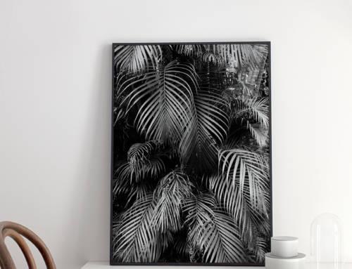 Nuevos grabados en la tienda: serie botánica